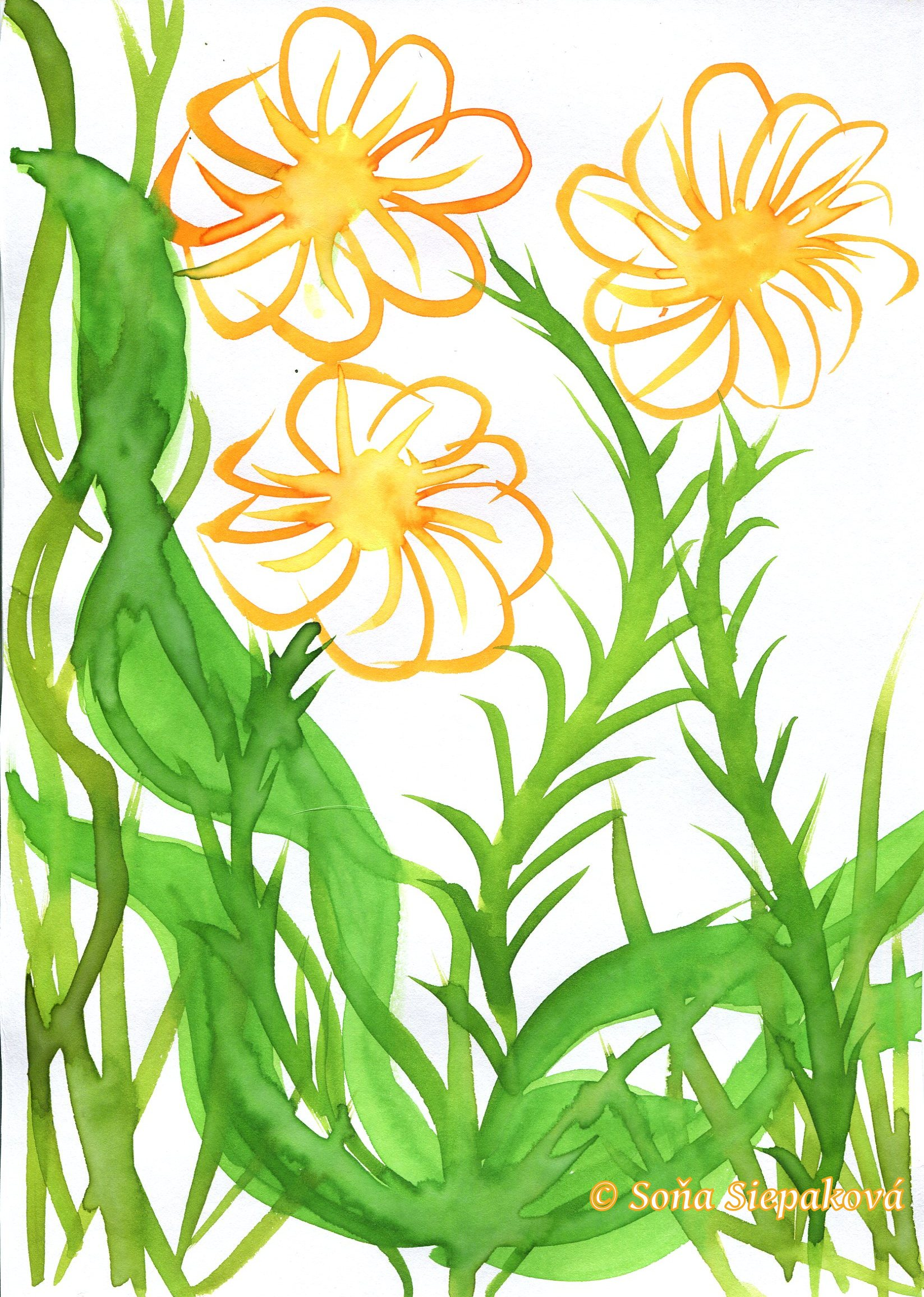 Yellow Flowers. Illustration by Sona Siepakova